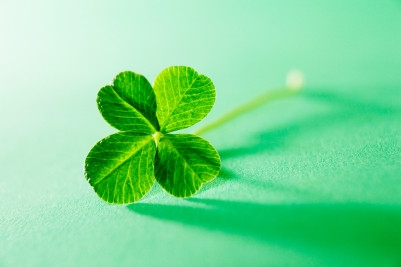10 Fun Facts About Four-Leaf Clovers