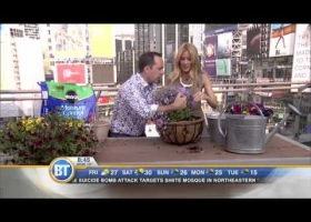 How to get better flower baskets with more blooms with Frankie Flowers