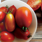 Time to Talk Tomatoes with Frankie Flowers