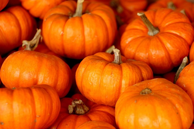 10 Cool Facts About Pumpkins